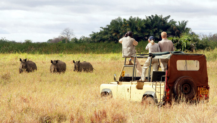 Berceau de l'humanité, le Kenya abrite également les plus beaux parcs et les plus belles réserves naturelles d'Afrique : Masai Mara, Mont Kenya, Amboseli, Lac Nakuru, Tsavo Est et Tsavo Ouest… Un décor digne d'Out of Africa ! Opter pour un safari photo au Kenya, c'est partir à la rencontre d'animaux sauvages en pleine savane : lions, éléphants, girafes, gazelles, zèbres… Les plus courageux se lèveront à l'aube pour admirer les neiges du Kilimandjaro.  Découvrez le Kenya avec PartirZen Le Kenya est si diversifié qu'après votre safari, vous pouvez profiter d'un séjour balnéaire dans le cadre enchanteur de...